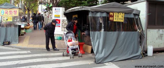 Señora coreana paseando un perrito en un carro para bebé, en Daegu