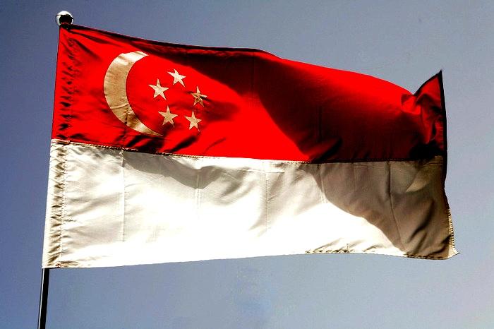 Singapore Flag Pictures