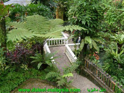"""حديقة الفراشات كوالالمبور طط¯ظٹظ'ط© ط§ظ""""ظپط±ط§ط´ط§طھ.jpg"""