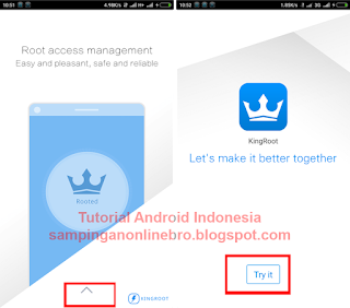 proses root 1