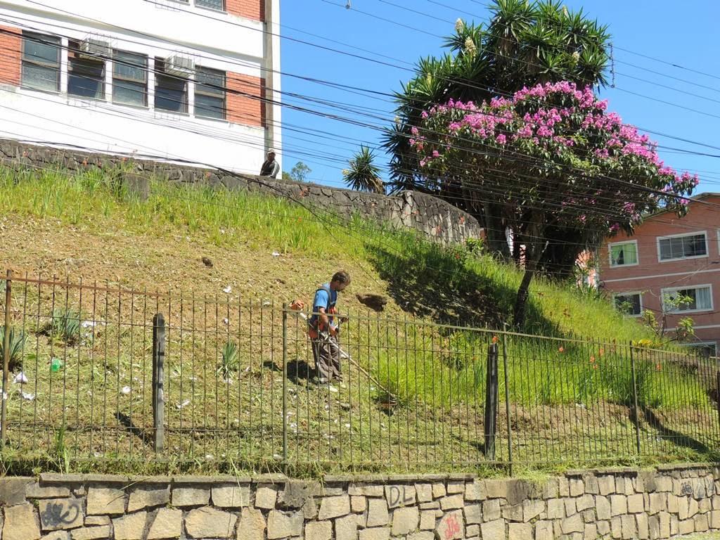 Jardim do Colégio Presidente Bernardes, em São Pedro, passa por manutenção