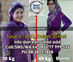 smartdetox contact