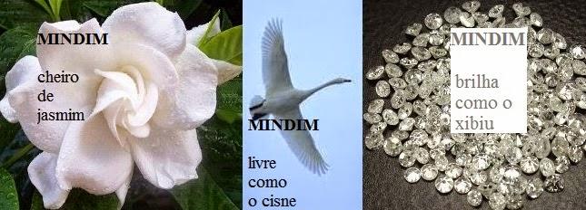 MINDIM NOS REINOS vegetal=jasmim gardênia*animal=cisne branco*mineral=diamante xibiu