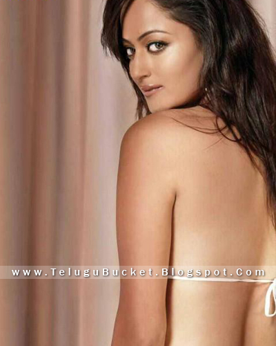 telugu bucket exclusive collection of kollywood actresses back knot