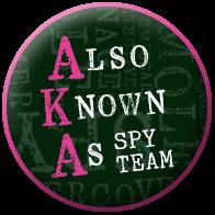 AKA Spy Team