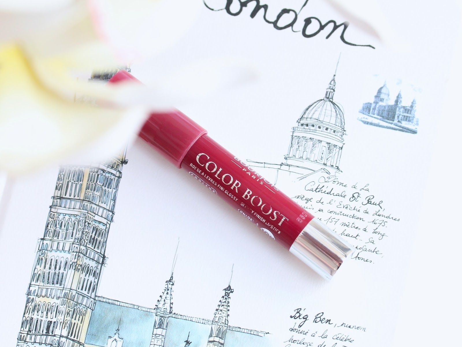 Bourjois Color Boost Lip Crayon in Plum Russian