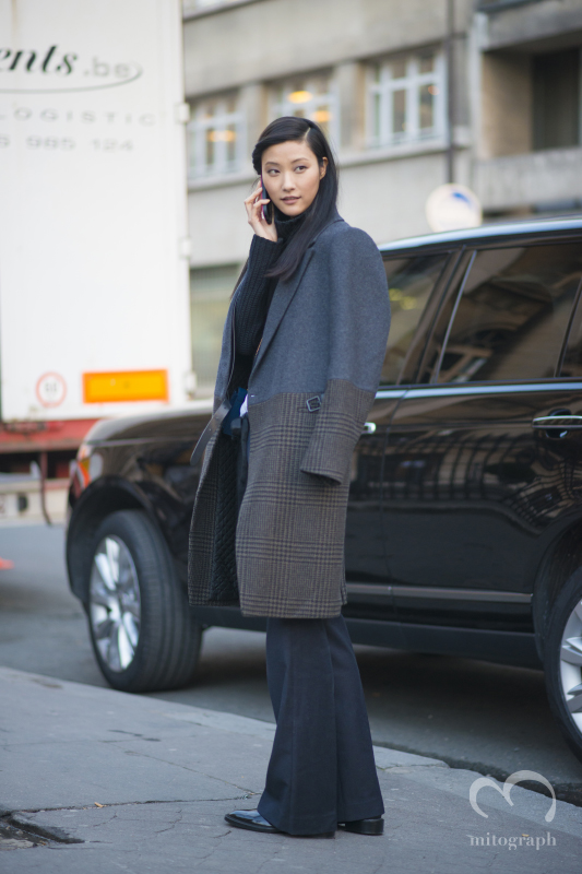 Model JiHye Park is at Hermes 2014 Fall Winter show during Paris Fashion Week