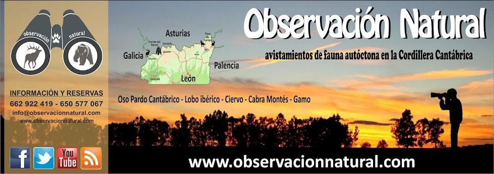 Observación Natural