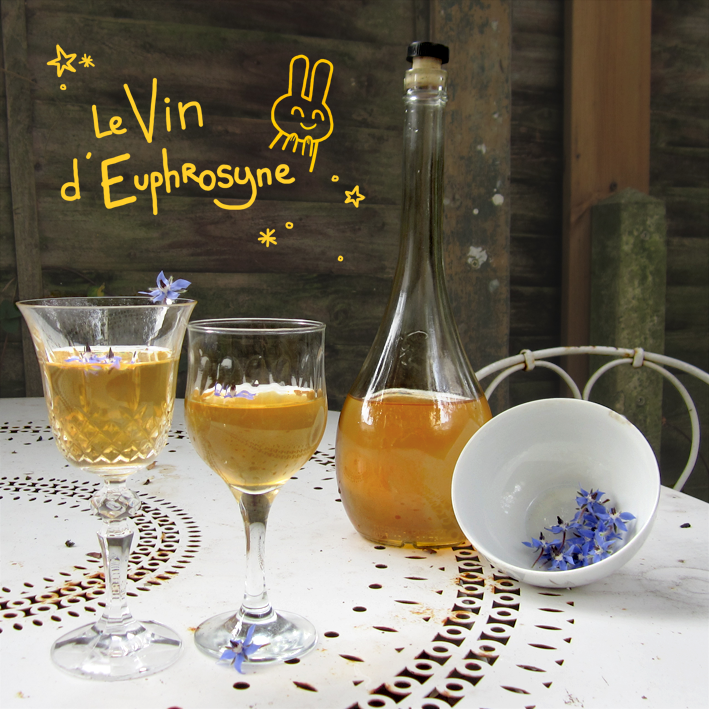 Vin d'Euphrosyne - Bourrache - http://spicerabbits.blogspot.fr/
