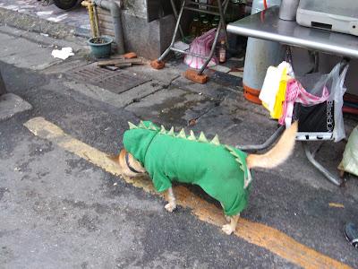 Vps Dragon Citi
