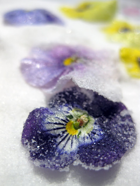 photo of edible sugar flowers for cakes