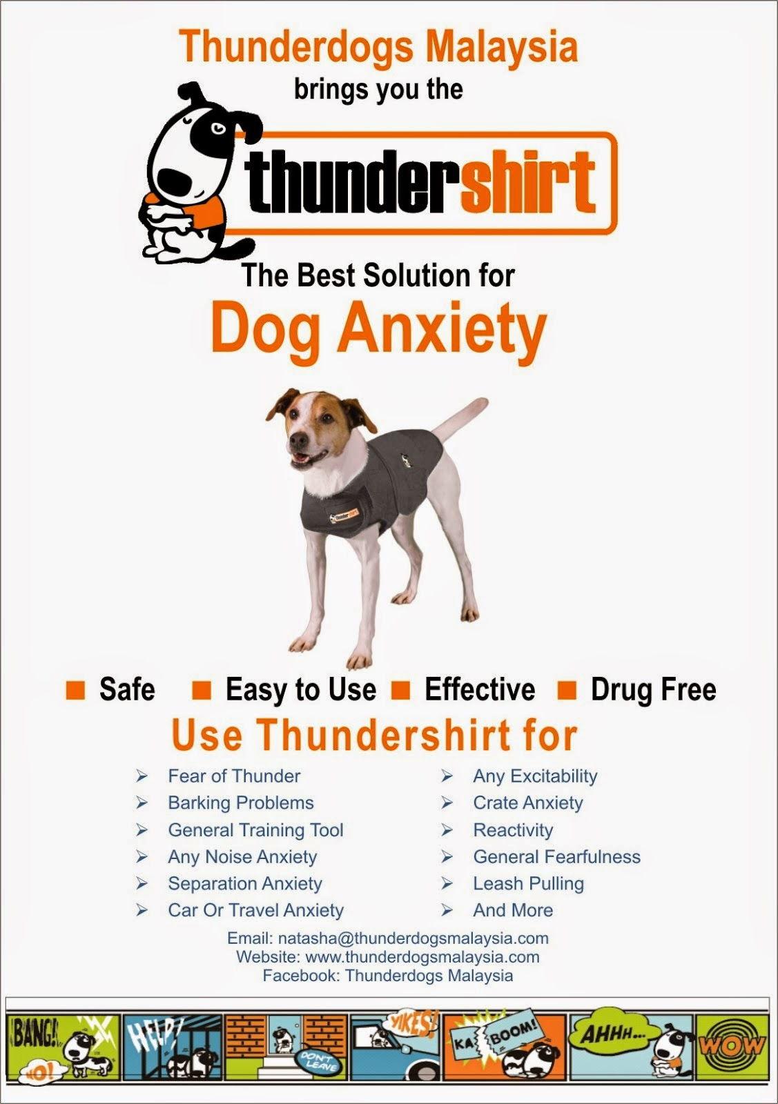 THE BEST SOLUTION FOR DOG ANXIETY