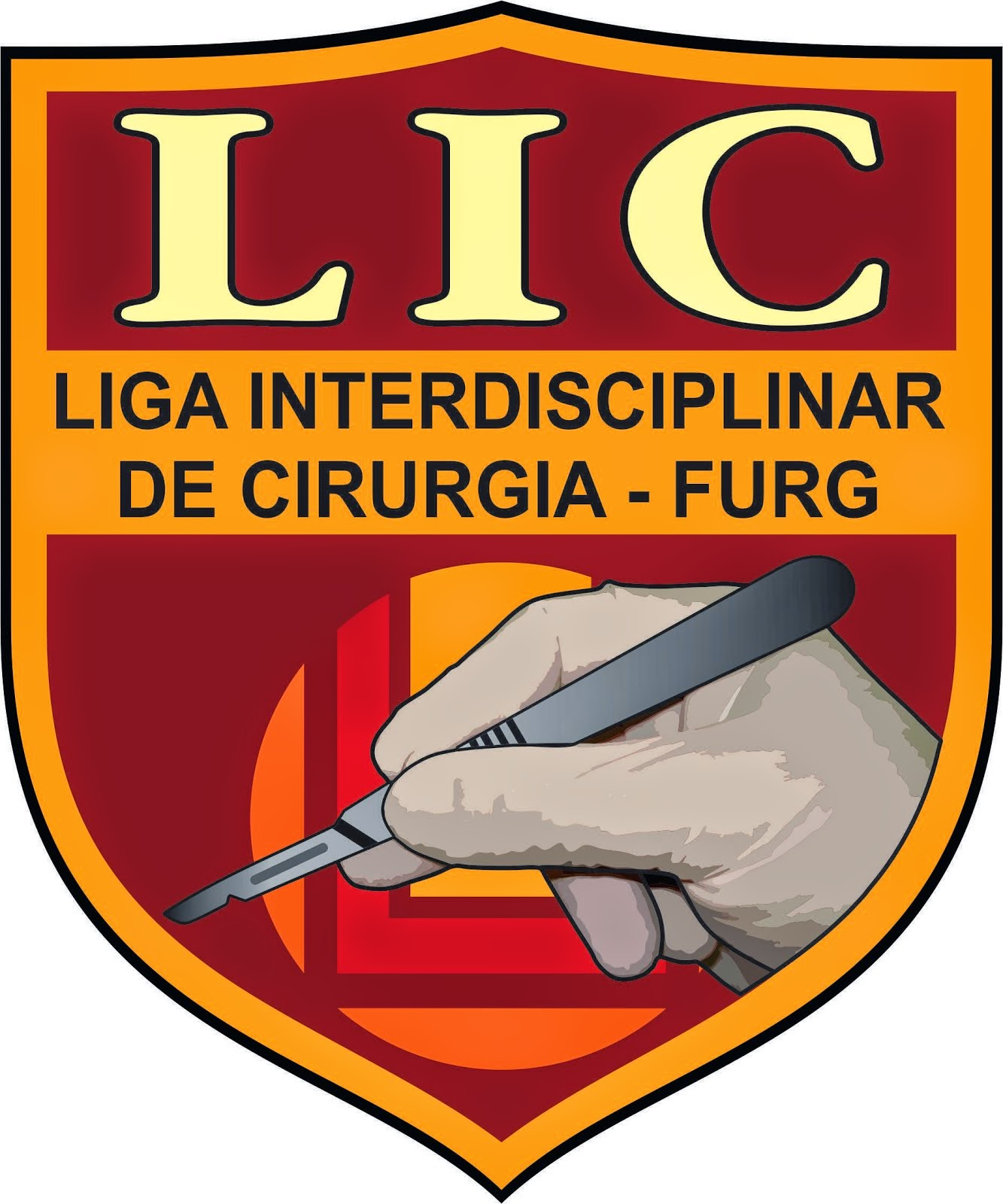 Ligas______ e _____ Blogs ______Parceiros:  Liga Interdisciplinar de Cirurgia