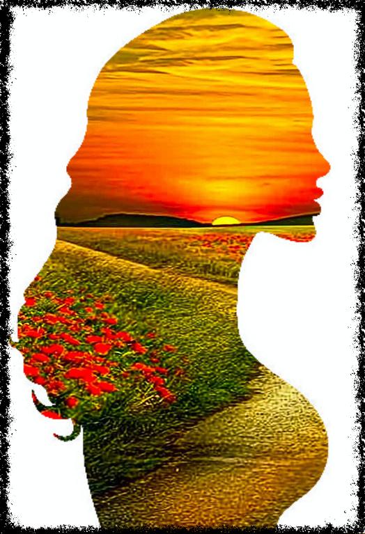 Silhueta de mulher em campo de flores