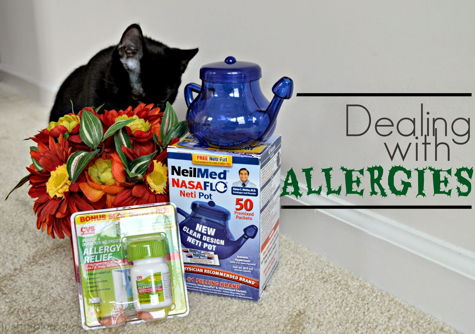 Remedies for dealing with indoor and outdoor allergens