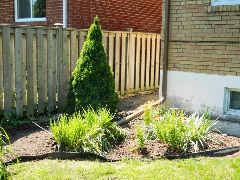 Scarborough Toronto back yard garden clean up after by Paul Jung Gardening Services