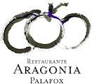 Nueva carta en ARAGONIA PALAFOX y CELEBRIS