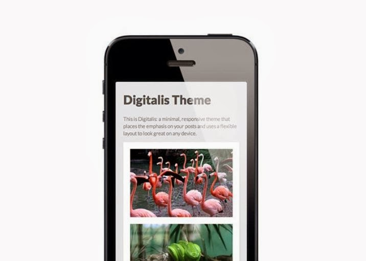 Digitalis Free Responsive Tumblr Theme