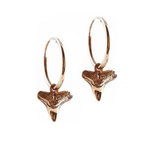 Tiny Shark Tooth Hopp Earrings Rachel Boton Jewellery Blog