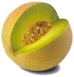 melon, buah melon, manfaat buah melon, manfaat melon, khasiat buah ...