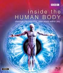 Capitulos de: En el interior del cuerpo humano