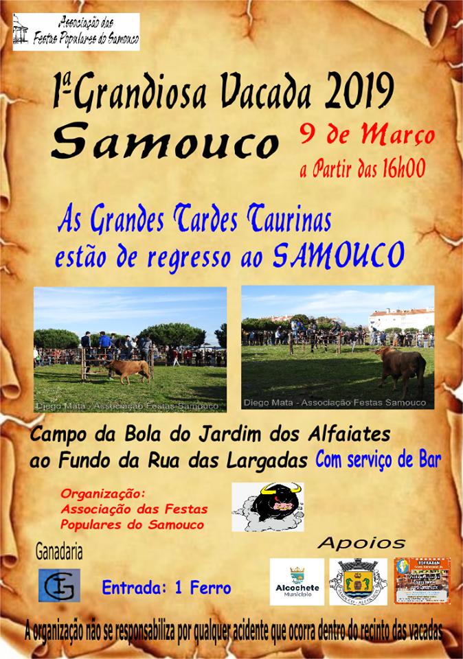 Samouco - 1ª Vacada de 2019 - Angariação de fundos para as Festas: