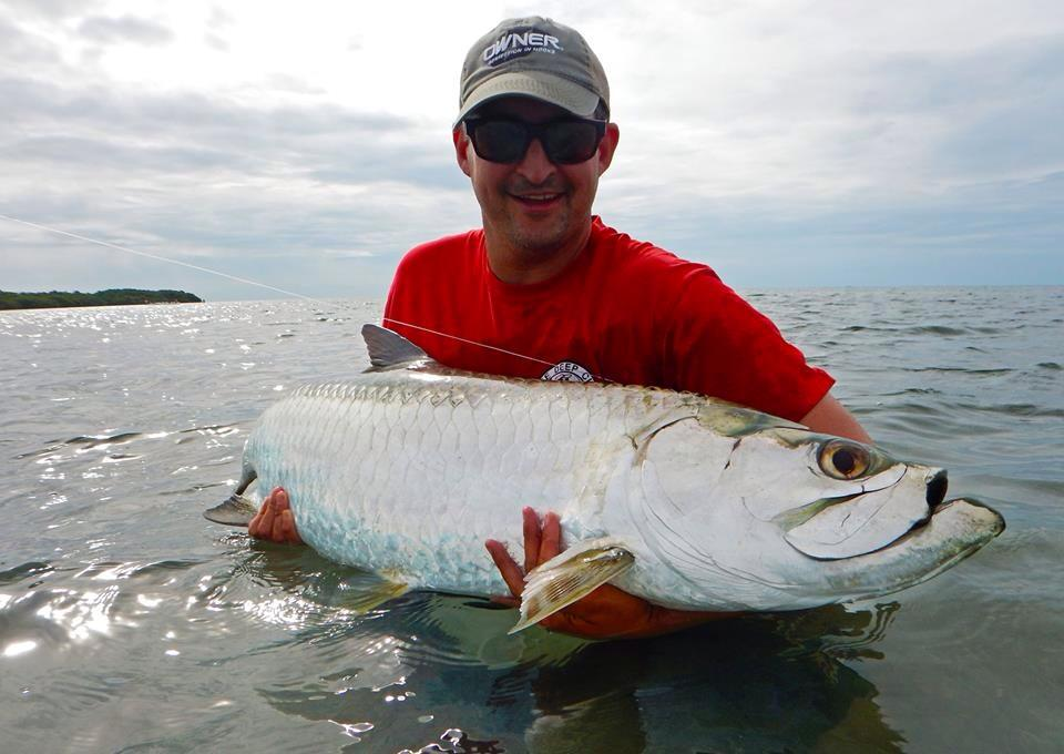Key West Tarpon