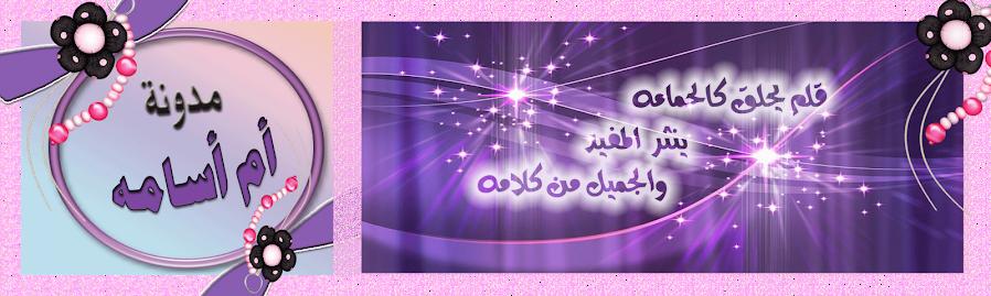 مدونة أم أسامه