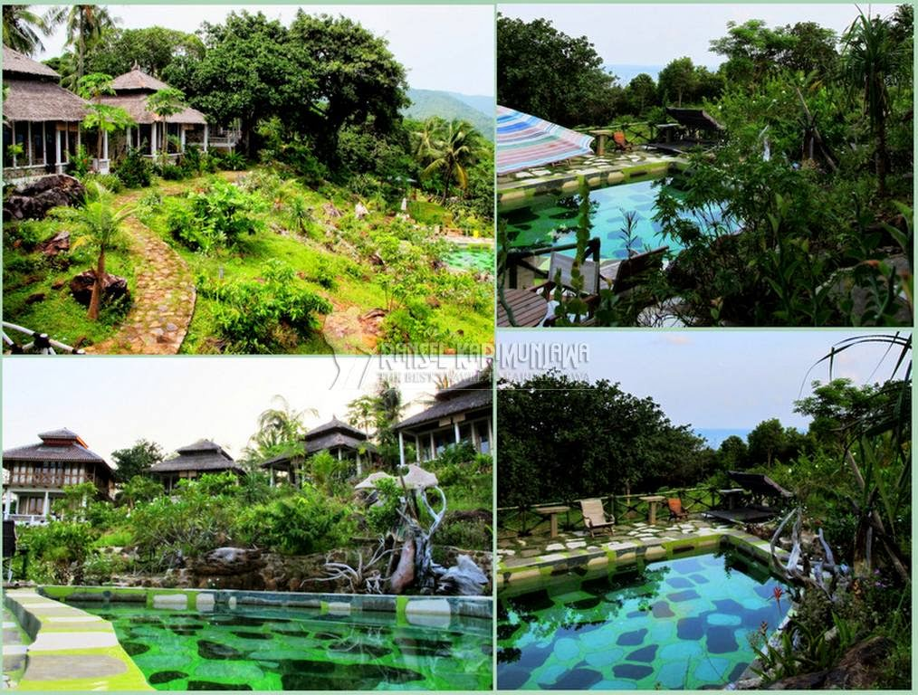 jiwaquest swiing pool