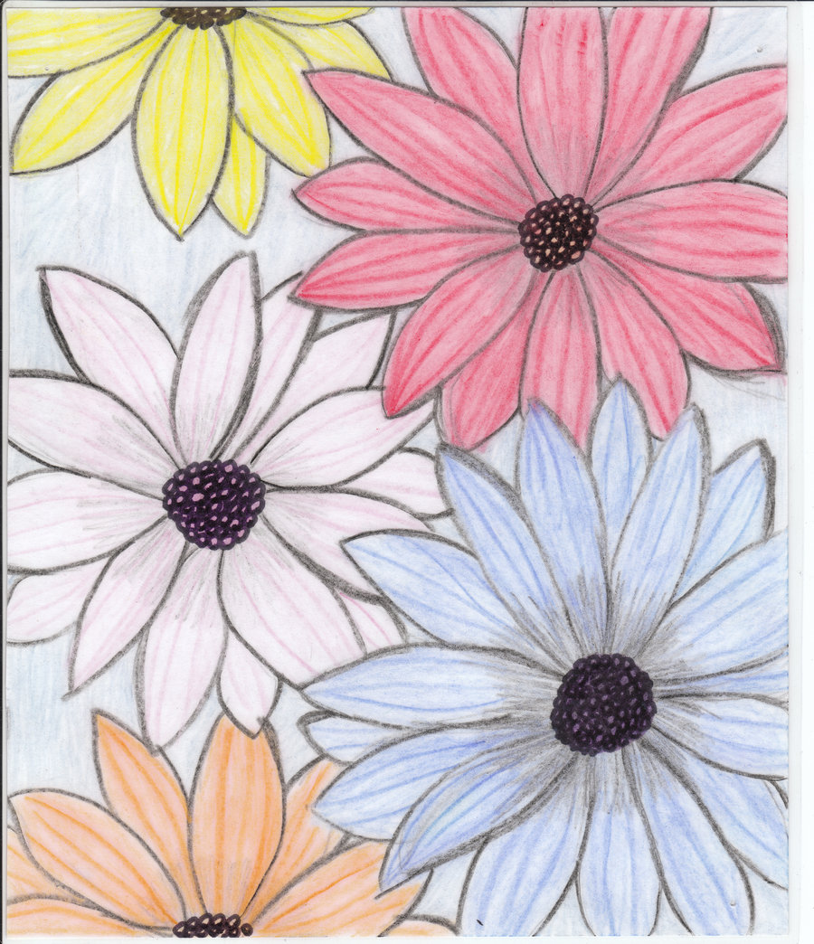Drawings of flowers for How do i draw a flower