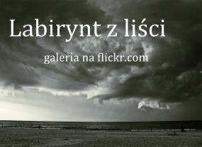 Galeria zdjęć na flickr