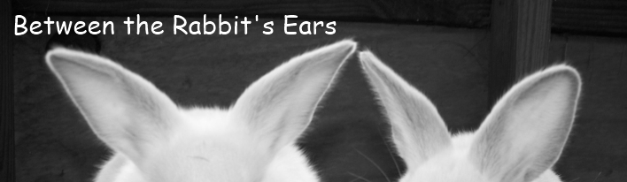 Between the Rabbit's Ears