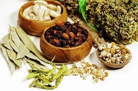 AYURVEDIC  AND HERBAL THERAPIES