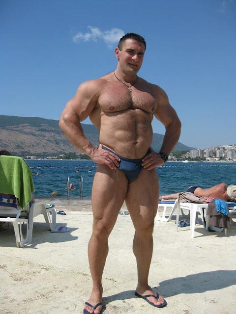 from Albert hairy muscle bull nude beach