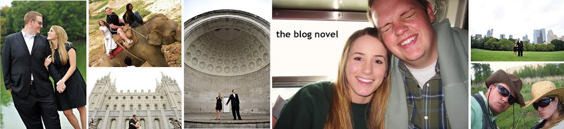 the blog novel