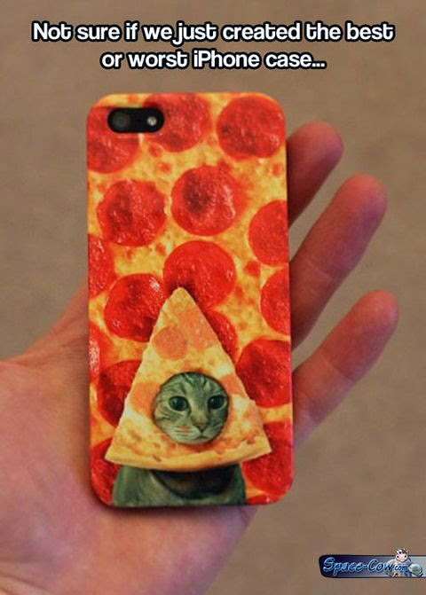 funny pizza cat pictures