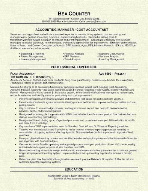 Accountant Resume2
