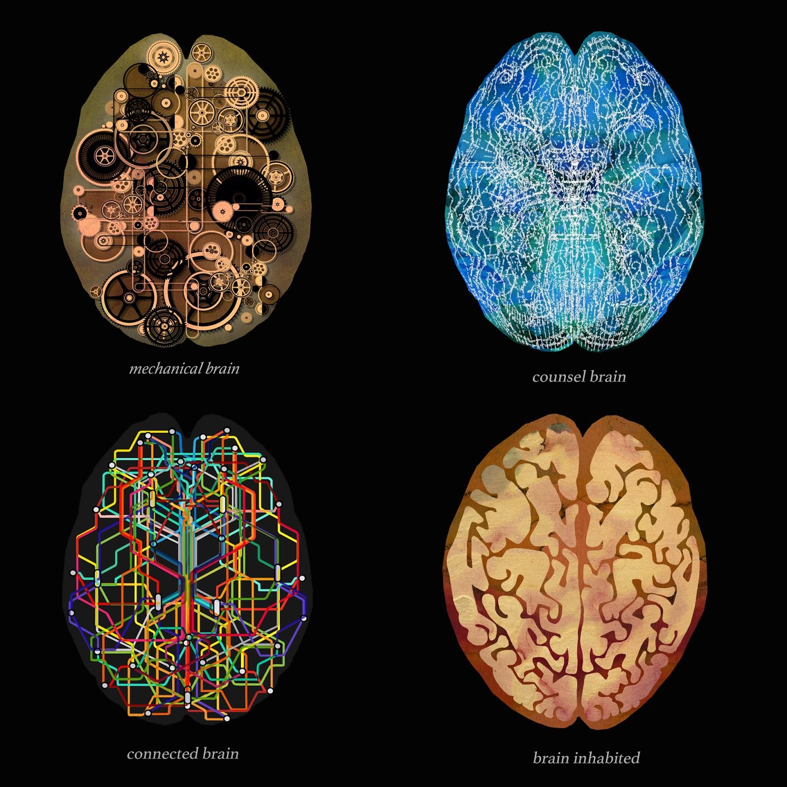 cerebro, cerebros