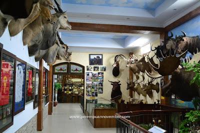 Rahmat International Wildlife Museum & Gallery wisata medan