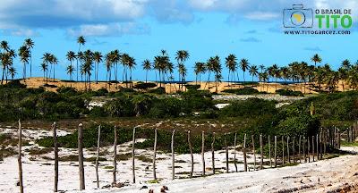 Paisagem vista do caminho de acesso à praia  de Santo Antônio, no Litoral Norte da Bahia