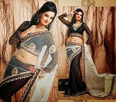 Stylish Indian Sarees Blouse