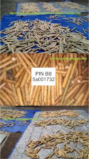 jual selongsong tabung bambu