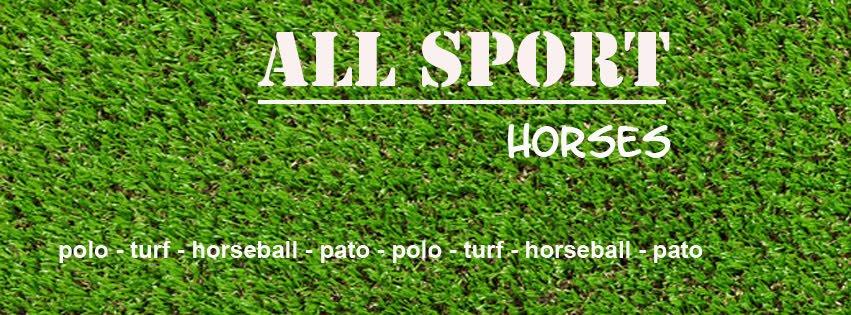 All Sport Horses