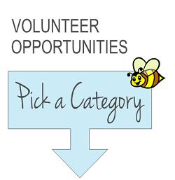 """""""Bee a volunteer"""""""