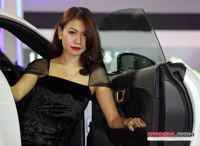SPG Jaguar Land Rover IIMS 2014