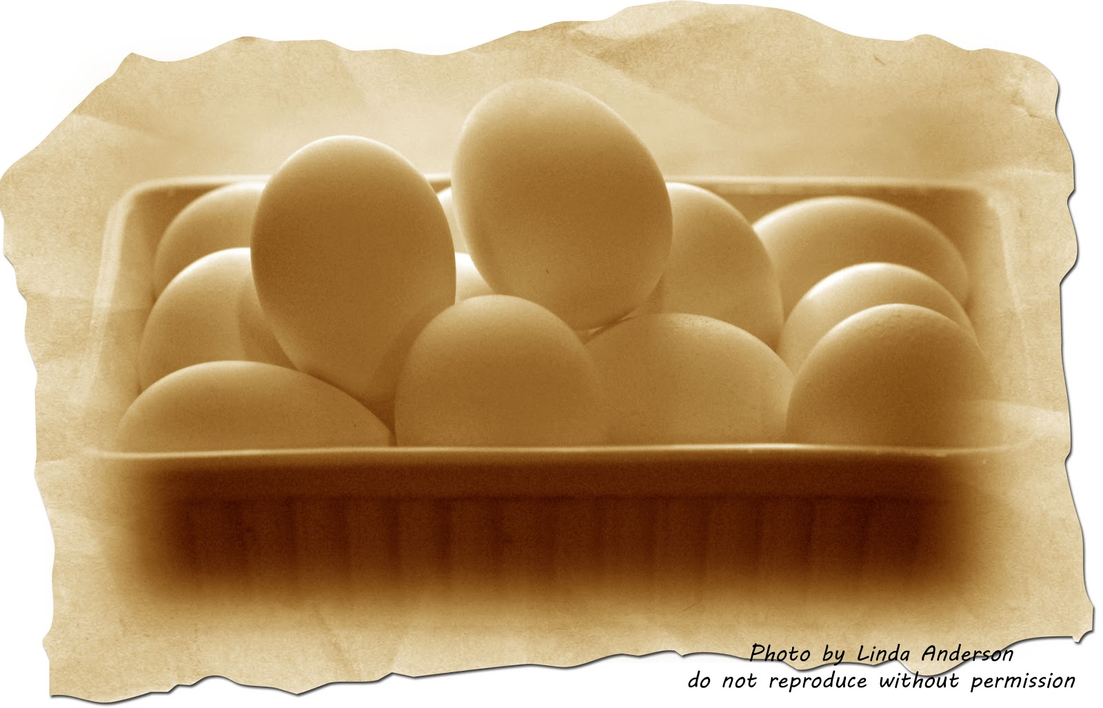 Dehydrating way beyond jerky the egg issue do we or dasnt we they range from raw eggs to scrambled eggs to boiled eggs when i first encountered them my salmonella gong ccuart Images