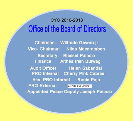 Office of the Board of Directors 2010-2013