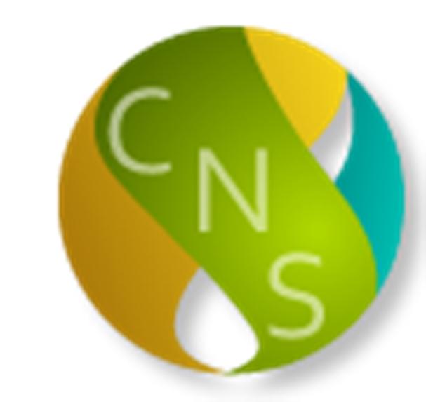 CARIBBEAN NEWS SERVICE