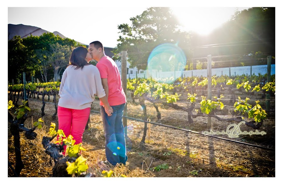 DK Photography Maralda1 Maralda & Andre's Engagement Shoot in Groot Constantia  Cape Town Wedding photographer