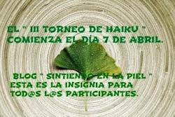 Torneo de haikus organizado por Lucía